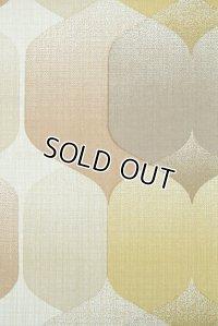 Wallpaper ビンテージ・アンティーク壁紙 (レトロ壁紙 クロス)  12-12