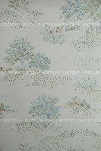 Wallpaper ビンテージ・アンティーク壁紙 (レトロ壁紙 クロス) 6-3